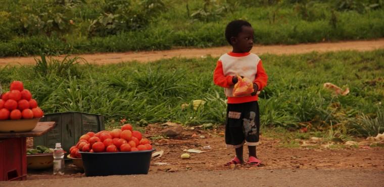 ZAMBIA, 4