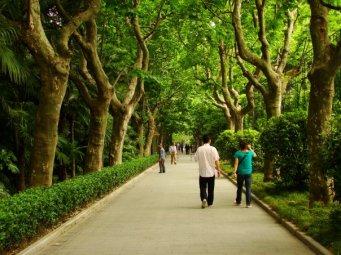 A walkway in Fu Xing Park