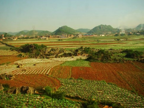 Vast Farming Field in the Yunnan Province