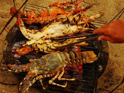 Lobsters on Nha Trang Beach