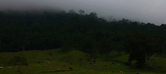 Landscape Between Bogota and Fusugusaga