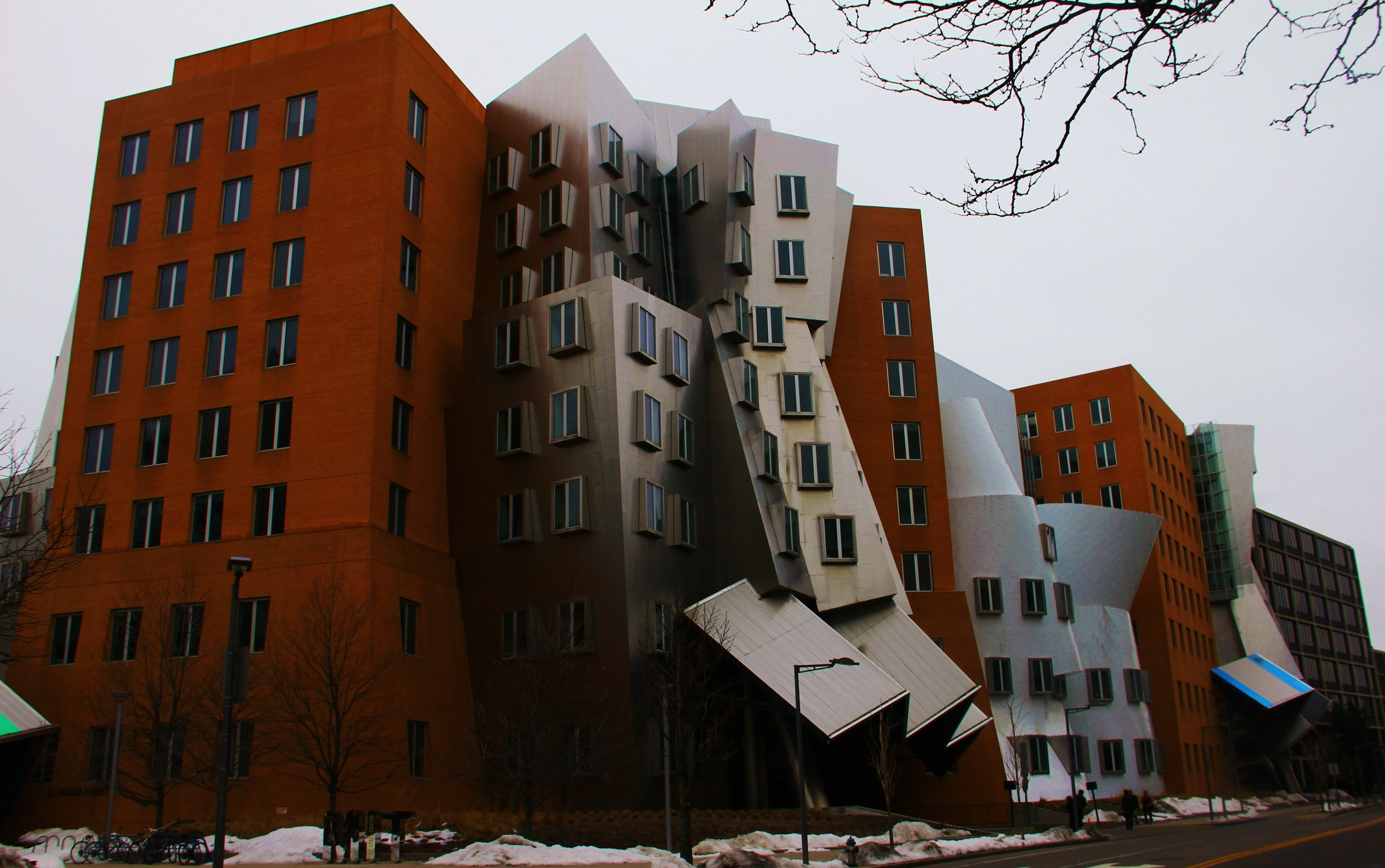 Boston Architecture Frank Gehry At Mit Tokidoki Nomad