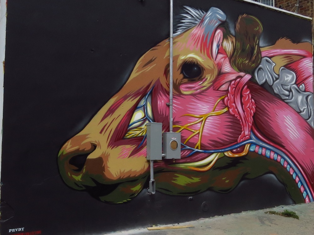 NYC STREET ART: INSIDE A COW'S HEAD by PRVRT (3/4)