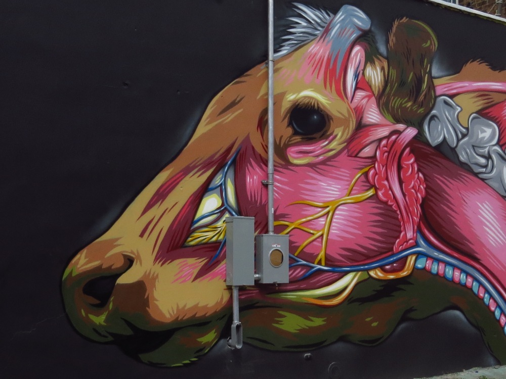 NYC STREET ART: INSIDE A COW'S HEAD by PRVRT (1/4)