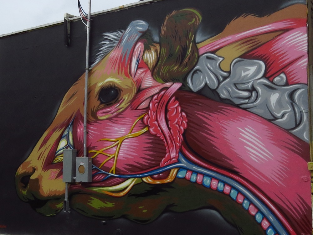 NYC STREET ART: INSIDE A COW'S HEAD by PRVRT (4/4)