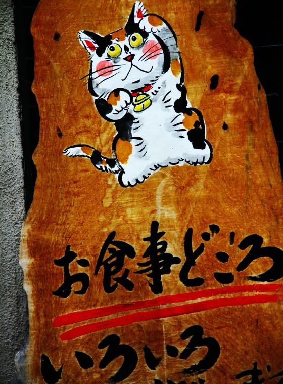kyogo 004