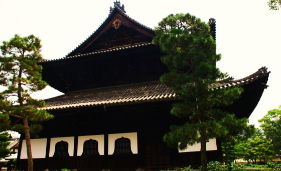 kyogo 033