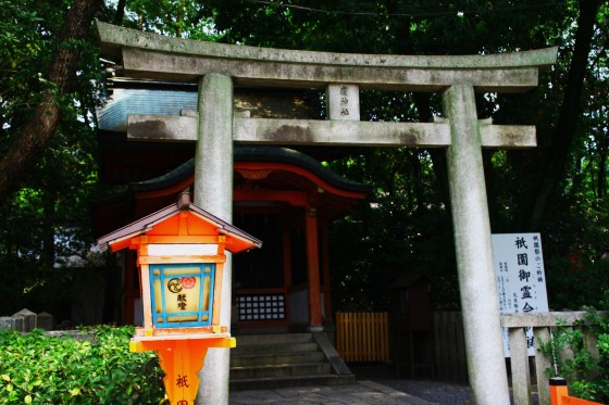 kyogo 143