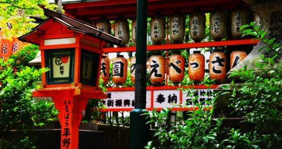 kyogo 144