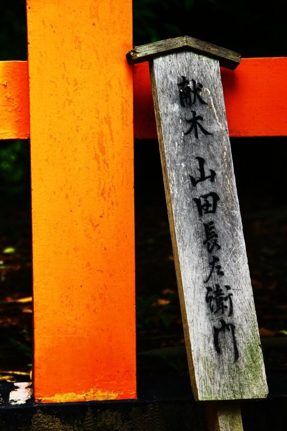 kyogo 156