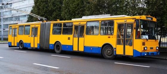 lviva 018