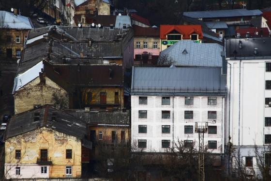 lviva 377