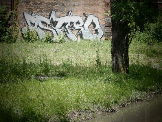 ds 570