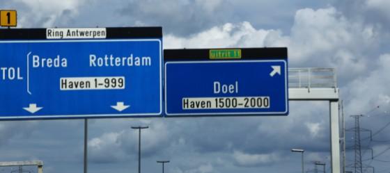 doe 008