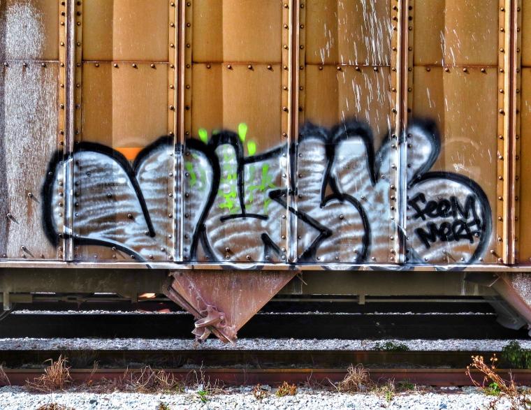 IMG_7995