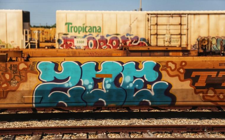 IMG_7881